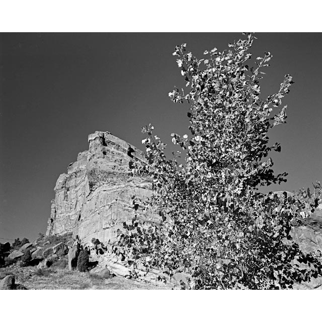 Untitled<br/>